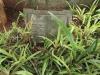 St Thomas Cemetery - Grave -  Henry Davis 1947 & Emily