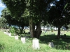 redhill-cemetery-chinese-merchant-navy-graves-wwii-2
