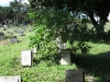 redhill-cemetery-chinese-merchant-navy-graves-wwii-5