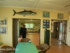 Durban Paddle Ski Club Interior