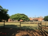 Durban - Kings Park Stables (6)