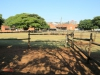 Durban - Kings Park Stables (7)