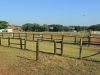 Durban - Kings Park Stables (8)