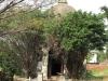stamford-hill-cemetary-12-poplar-lane-s-29-48-933-e-31-01-530-elev-14-43