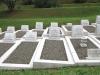 stellawood-cemetary-merchant-navy-graves-bracken-wilcock-caley_0