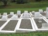 stellawood-cemetary-merchant-navy-graves-bracken-wilcock-caley_1