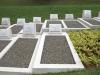 stellawood-cemetary-merchant-navy-graves-davidson-seymour_0