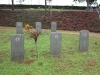 stellawood-military-cemetary-c-redelinhuys-ch-britz-jh-turner-1945