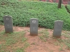 stellawood-military-cemetary-cpl-e-donnelly-p-o-coventary-sapper-bayne