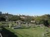 sparks-estate-kennilworth-road-cemetery-s-29-50-20-e-30-59-14-elev-120m-8