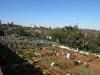 sparks-estate-kennilworth-road-muslim-cemetery-s-29-50-20-e-30-59-14-elev-120m-10