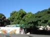 sydenham-crescent-road-veg-market-s-29-49-777-e-30-59-2