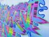 bluff-ansteys-beach-foreshore-drive-graffitti-s-29-55-55-e-31-00-47-elev-7m-16
