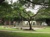 durban-umbilo-albert-dhlomo-resistance-park-monument-park-fountain-s-29-52-192-e-30-59-686-elev-26m-84