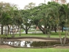 durban-umbilo-albert-dhlomo-resistance-park-monument-park-fountain-s-29-52-192-e-30-59-686-elev-26m-85