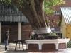 umgeni-ivy- SVEA Alayam Hindu-Temple-1874-s29-50-039-e-31-01-466-elev29m-21