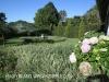 Umlaas - Eden Lassie gardens and dam (1)