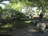 Empangeni Cemetery - Breytenbach -  (35)