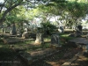 Empangeni Cemetery - Van Niekerk & Pretorius (38).JPG
