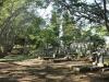 Empangeni Cemetery - graveyard views (9)