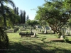 Empangeni Cemetery - views (30)