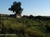 Slievyre Game Farm Haviland village