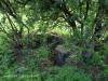 Slievyre Game Farm stone kraals (3)