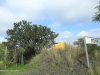 Cabbage Express Mona Tanks and Bridge  28.50.51 S 29.59.47 E Weenen Reserve (4)