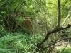 Cabbage Express  Tierkloof 4.5m arch culvert Weenen Reserve (4)