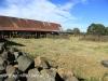 Lions Bush barn and stone pens (5)