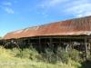 Lions Bush barn and stone pens (9.) (2)