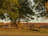 glencoe-primary-school-3