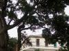 Durban-Glenwood-St-Martins-Home-exterior-239-Clark-Road-22