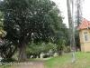 Meyrick Bennett Centre 191 Chelsford Road Gardens ..(3)