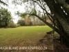Holme Lacy garden outlook. (1)