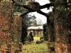 Holme Lacy garden pergola