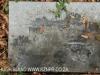 Holme Lacy grave Frederick James Mason 1986