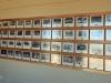 Greytown - Greytown Hoerskool -  Class photos