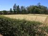 Greytown - Harding Street - King Edward VII Park Sportsfield - 29.04.173 S 30.35.312 E - Bowls (2)