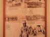 Greytown Museum - Durban Street - Display - Bhambatha (4)