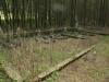 greytown-sarie-marais-aya-jana-graves-s29-03-008-e30-44-262-elev-1080m-6