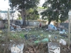 greyville-campbell-ave-empty-plot-s-29-50-331-e31-01-215