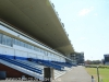 Greyville Race course (22)