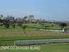 Greyville Race course (25)