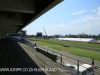 Greyville Race course (29)