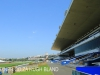 Greyville Race course (7)