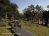 Groutville Congregational Church graveyard (1)