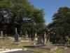 Groutville Congregational Church graveyard (2)