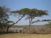 Hazelmere Dam - Umsinsi Reserve -  Facilities & Dam views (2)
