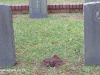 Malvern-Military-Grave-Pvt-P-Somon-and-Pvt-P-Johnson